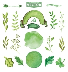 Watercolor green decor branches Floralpetal set vector image vector image