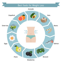 best foods for weight loss best foods for weight vector image