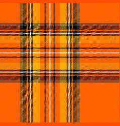 halloween tartan plaid pattern scottish cage vector image