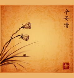 Lotus seed heads leaves of grass and little snail vector