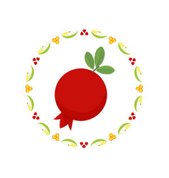 pomegranate in round frame vector image