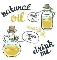 Set of bottles with linseed and olive oil isolated vector image