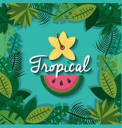tropical fruit and flower with leaves foliage vector image