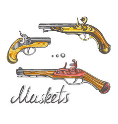 muskets set ancient pistols vector image vector image