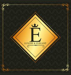 luxury and elegant e letter frame decoration vector image