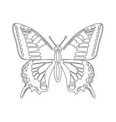 Colorless butterfly isolated vector