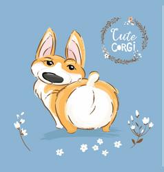 Cute corgi dog puppy back tail vector