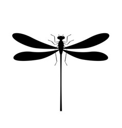 dragonfly silhouette icon isolated symbol of vector image