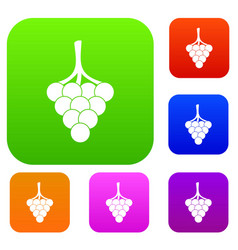 grapes on the branch set color collection vector image