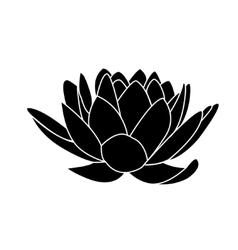 Lotus flowers icon vector