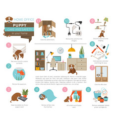 puppy care and safety in your home home office vector image