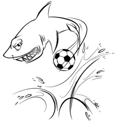 shark vector image