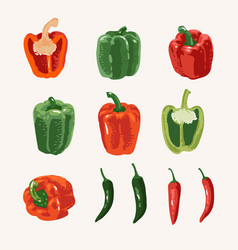 Summer set sweet and hot peppers isolated vector