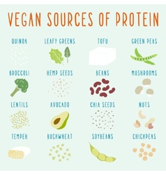Vegan sources of protein vector image