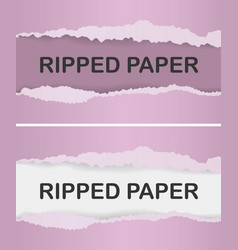realistic ripped paper vector image vector image