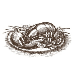 Lobster with lemon slices over white drawn by hand vector image vector image