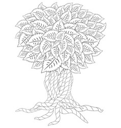 blossom tree coloring book for adult doodles for vector image
