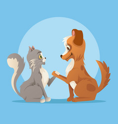 Cat and dog characters best friends smiling vector