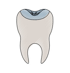Restored tooth with root in colored crayon vector