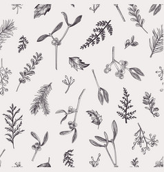 seamless pattern with leaves seeds conifers vector image