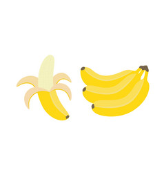 set of bunches of fresh banana isolated on white vector image
