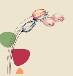 tulip flower bouquet gracious floral card vector image