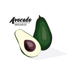 cartoon avocado ripe green fruit vegetarian vector image