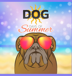 Dog days of summer logo icon design vector