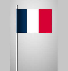 flag of france national flag on flagpole vector image