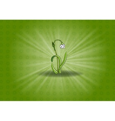 flower on the shining background vector image