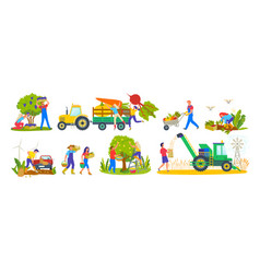 harvesting season tractor and agriculture workers vector image