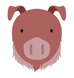 isolated cute pig avatar vector image
