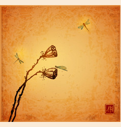 Lotus seed heads and dragonflies on vintage vector