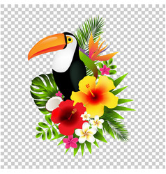 Toucans and flowers vector