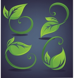 bright and green leaves vector image