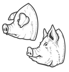 set of pig heads isolated on white background vector image vector image