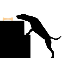 Dog steals bone vector image