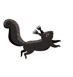 black squirrel isolated on a white background vector image