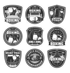 Boxing and muay thai single combats icons vector