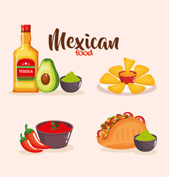 delicious mexican food icons vector image