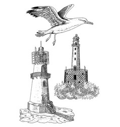 Design set with old light houses and gull vector