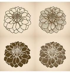 FLOWER dahlia v2 03 four var vector image