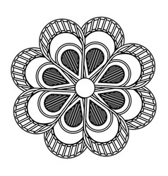 flower decoration abstract beauty decoration black vector image