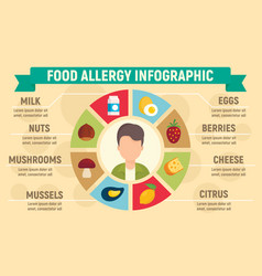 Food allergy infographic flat style vector