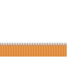Many pencils lying in a row on a white background vector