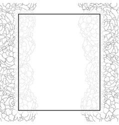 Marigold banner card border outline vector