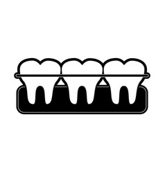 Molar teeth emblem dentistry related icon image vector