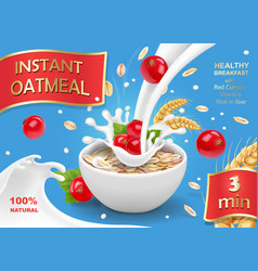 Oatmeal flakes with milk and red currant vector