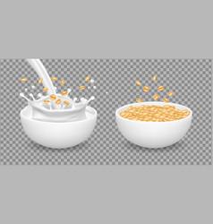 oatmeal milk muesli wheat healthy organic food vector image