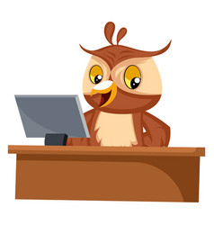 Owl working on computer on white background vector